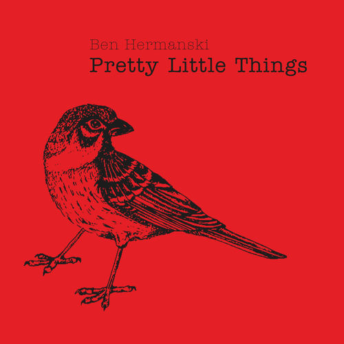 Ben Hermanski - Pretty Little Things - Album - 2017