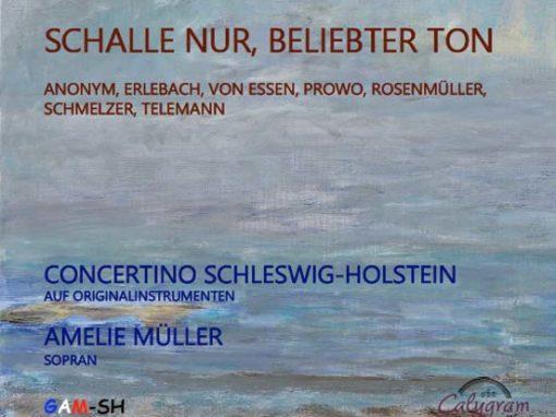 CONCERTINO SCHLESWIG-HOLSTEIN